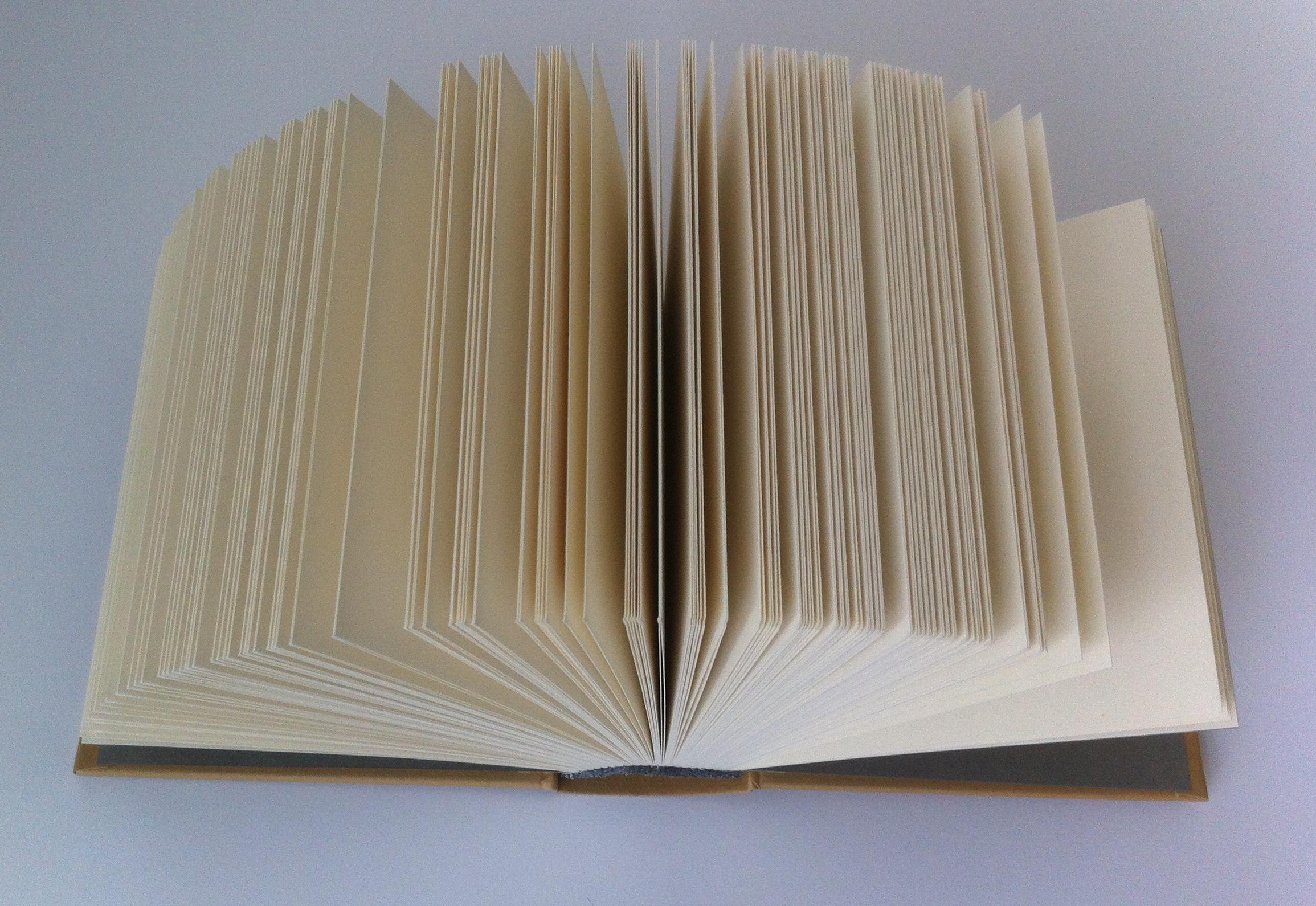 Book: erwin wurm. von konfektionsgröße 50 zu 54 in acht tagen, 2006