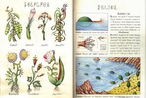 Luigi Serafini: Codex-Seraphinianus (Quelle: http://www.openlettersmonthly.com)
