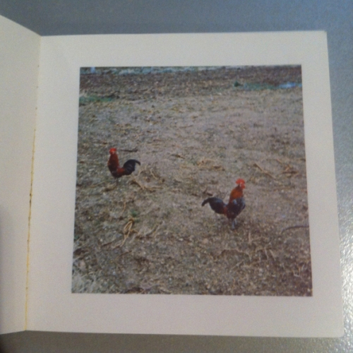 Künstlerbuch | artists' book: Sol LeWitt, Cock Fight Dance, 1980 (Foto: Marlene Obermayer)