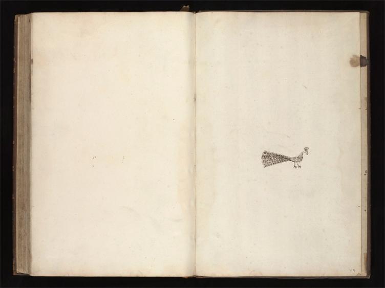 Tuschezeichnung aus dem MS.2954, f.119r
