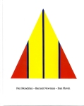 Piet Mondrian - Barnett Newman - Dan Flavin, Kunstmuseum Basel 2013