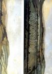 Cosima von Bonin. Wyoming, Kunsthalle St. Gallen 1999