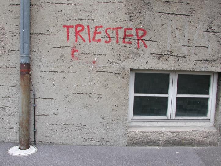 Martin Behr, Martin Osterider: Triester, Band / Volume 5 Edition Camera Austria 2013
