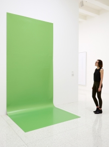 View of the exhibition Ordinary Pictures, 2016; Liz Deschenes, Green Screen #4, 2001 Photo: Gene Pittman, ©Walker Art Center