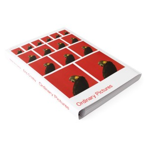 Catalogue Ordinary Pictures Walker Art Center 2016
